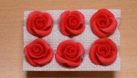 piros_kis_r__zsa.jpg