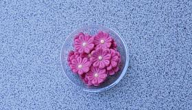 marcip__n_apr___vir__g_pink.jpg