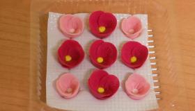 pink_r__zsa_barackvir__g.jpg