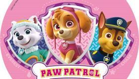 paw_patrol_r__zsasz__n.jpg