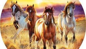 lovak__pasztlell_.jpg